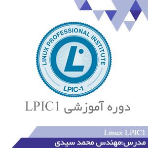 دوره اموزشی lpici